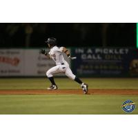 Oswaldo Cabrera of the Charleston RiverDogs races around the bases with a triple