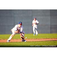 Ottawa Champions corral a ground ball
