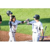 Victoria HarbourCats' Nick Plaia (left) is congratulated by Hunter Vansau (right) after Plaia's home run