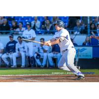 Matt Clayton of the Victoria HarbourCats