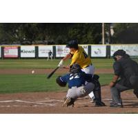 Vallejo Admirals in action