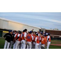 Albany Dutchmen celebrate a walk-off win