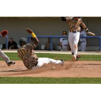 Sussex County Miners infielder Daniel Mateo slides home safely