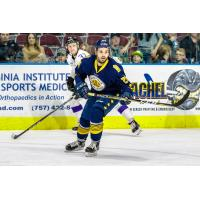Norfolk Admirals defenseman Balazs Goz