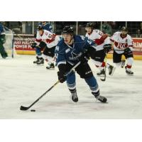 Idaho Steelheads forward Connor Chatham