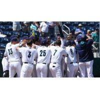 Everett AquaSox celebrate Troy Dixon's walk-off homer