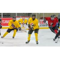 Michael Bianconi, Owen Power and Evan Vierling at Canada's national under-17 development camp