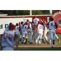 Wisconsin Rapids Rafters celebrate on the field