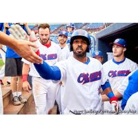 Handshakes in the Ottawa Champions dugout