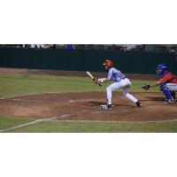 Acadiana Cane Cutters Lay down a Bunt