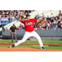 Victoria HarbourCats pitcher Gunnar Friend was stellar on the mound