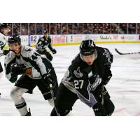 Idaho Steelheads forward Justin Parizek vs. the Utah Grizzlies