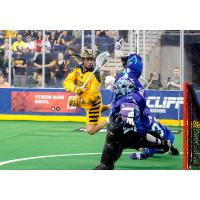 Georgia Swarm's Lyle Thompson leaps to score a goal