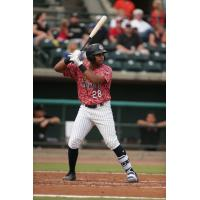 Charleston RiverDogs first baseman Dermis Garcia