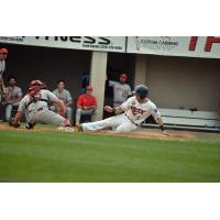 Ryan Davis of the St. Cloud Rox slides home safely