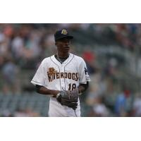 Charleston RiverDogs pitcher Reiver Sanmartin