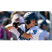 Connor Kopach of the Everett AquaSox