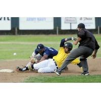 Vallejo Admirals safe at second