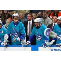 Mike Hasen of the Rochester Knighthawks