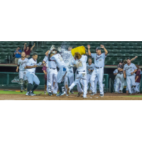Kansas City T-Bones celebrate walk-off home run