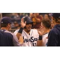 Everett AquaSox right fielder Ryan Garcia receives congratulations after his home run