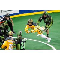 Jerome Thompson of the Georgia Swarm dives for a goal against the Saskatchewan Rush