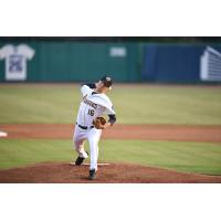 Charleston RiverDogs pitcher Janson Junk