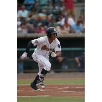 Wilkerman Garcia of the Charleston RiverDogs