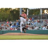 Charleston RiverDogs right-hander Alex Mauricio