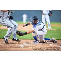 A close play at the plate between the Ottawa Champions and Quebec Capitales