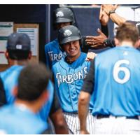 Diego Castillo of the Tampa Tarpons receives congratulations in the dugout