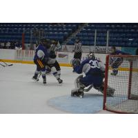 Sudbury Wolves Training Camp Action