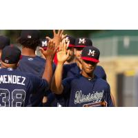 Mississippi Braves exchange high fives after a win