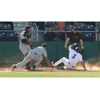 Everett AquaSox third baseman Bobby Honeyman slides home safely