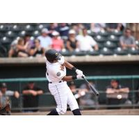 Dermis Garcia delivers a big blow for the Charleston RiverDogs