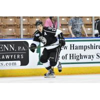 Gasper Kopitar of the Manchester Monarchs