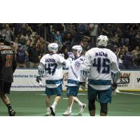 The Rochester Knighthawks celebrate a goal against New England