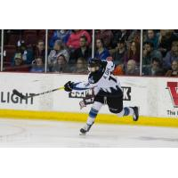 Idaho Steelheads forward Alexander Dahl