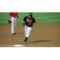 Dioner Navarro rounds the bases for the Long Island Ducks