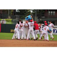 Memphis Redbirds celebrate a walk-off with to get to the PCL Championship Series