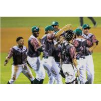 Daytona Tortugas celebrate a Game Three Win