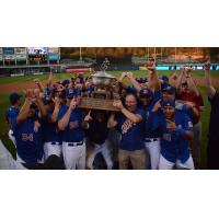 Durham Bulls celebrate International League title
