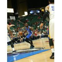 PG Damon Lynn with the Texas Legends