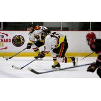 Maryland Black Bears rush up the ice