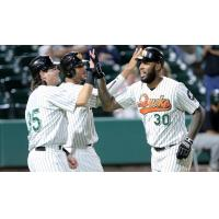 Long Island Ducks celebrate David Washington's homer