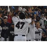Somerset Patriots celebrate Endy Chavez's home run