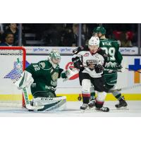 Vancouver Giants chase a loose puck against the Everett Silvertips