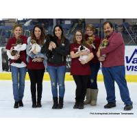 Johnstown Tomahawks Pucks and Paws Promotion
