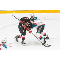 Kelowna Rockets battle the Prince George Cougars