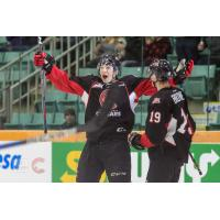 Prince George Cougars celebrate a goal